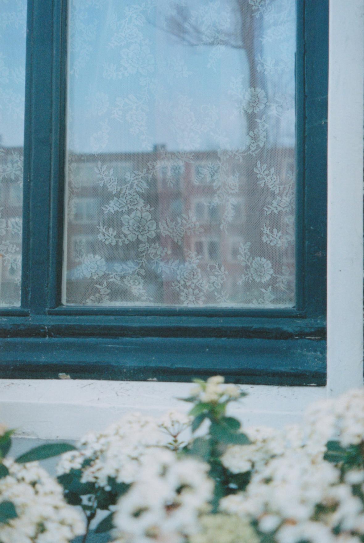 matchingflowers.jpg