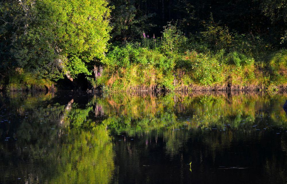 alakauvatsanjoki.jpg