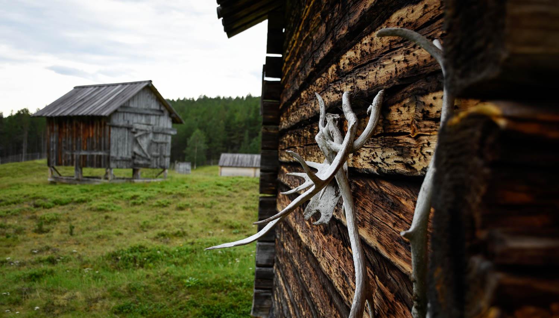 Seinät ovat toki koristeltu poronsarvilla.