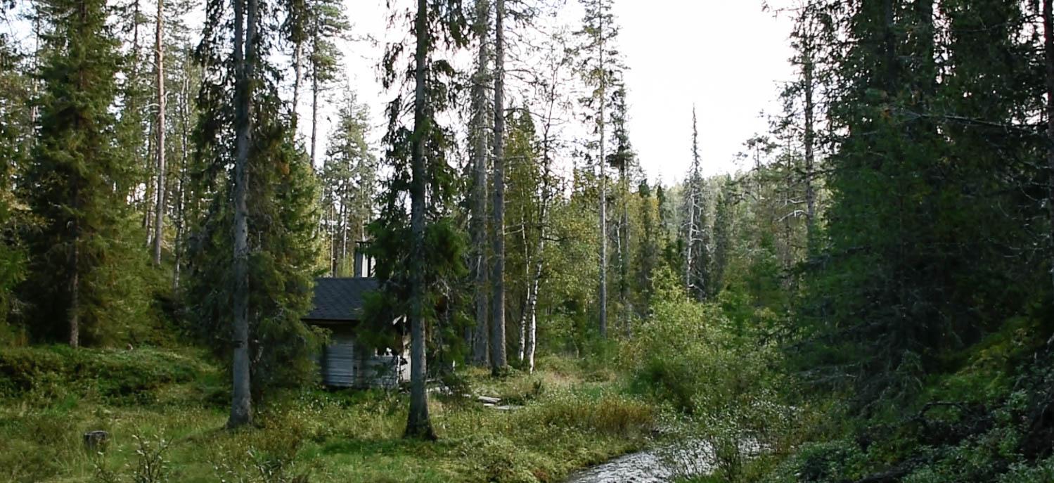 Anterin sauna Urho Kekkosen kansallispuistossa.