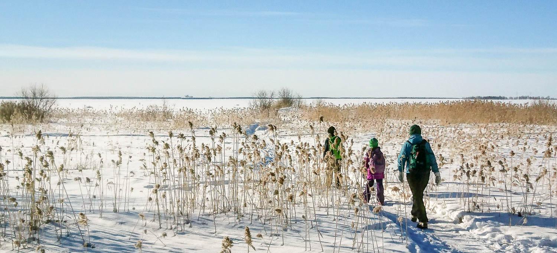 Talvikävelyllä lasten kanssa.