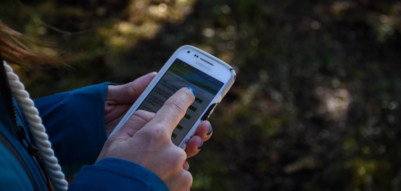 Mobiilisovellus vie luontopolulle.