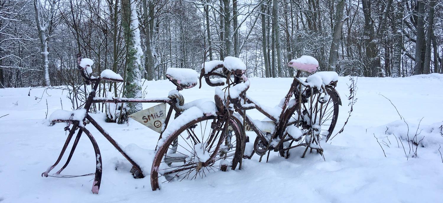 Eteenpäin, sano polkija lumessa.