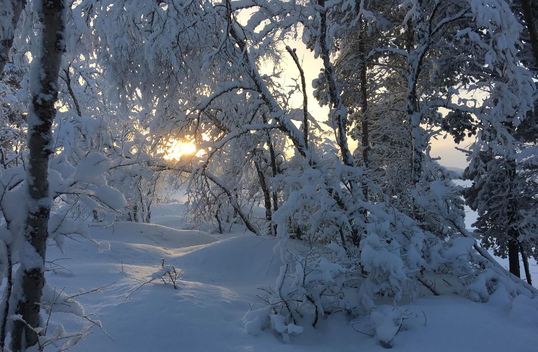Lunta on pohjoisessa riittämiin.