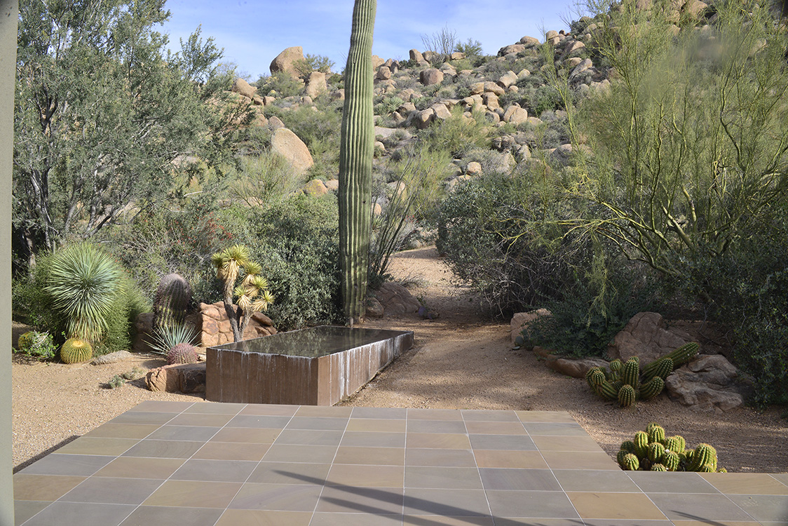 Troon Residence Steve Martino Landscape Architects