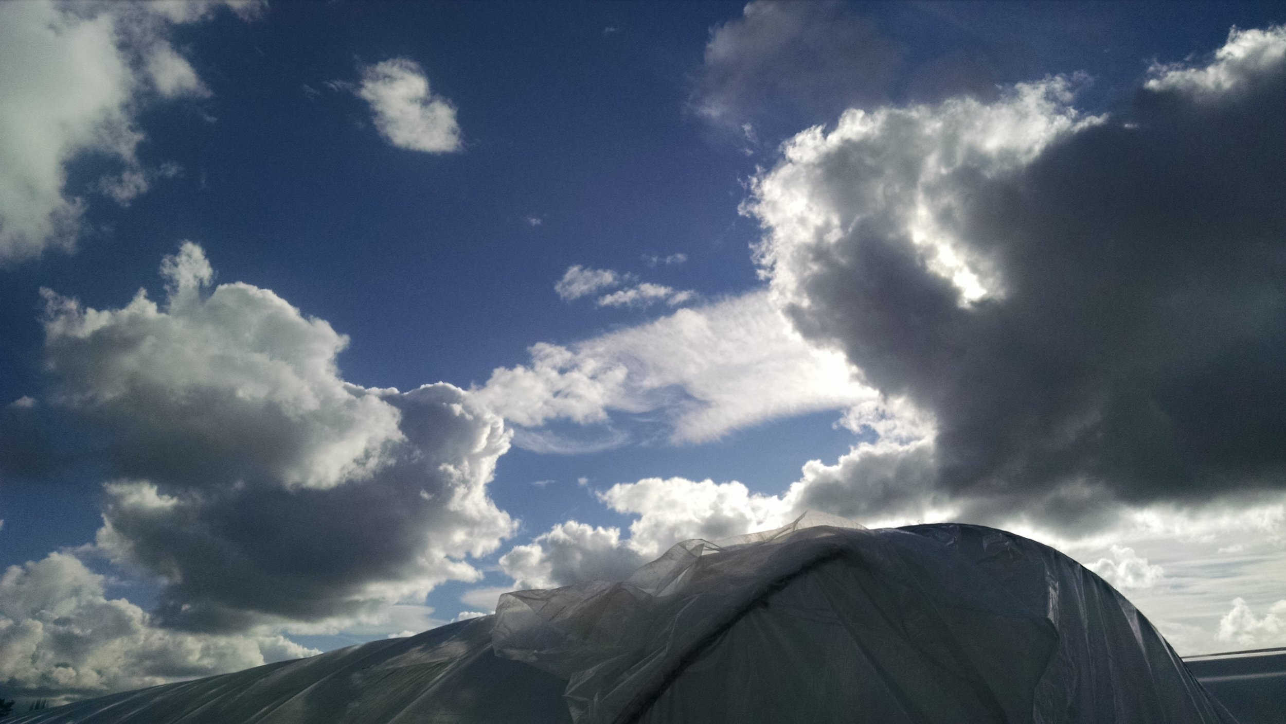 Greenhouse under a puffy sky.jpg