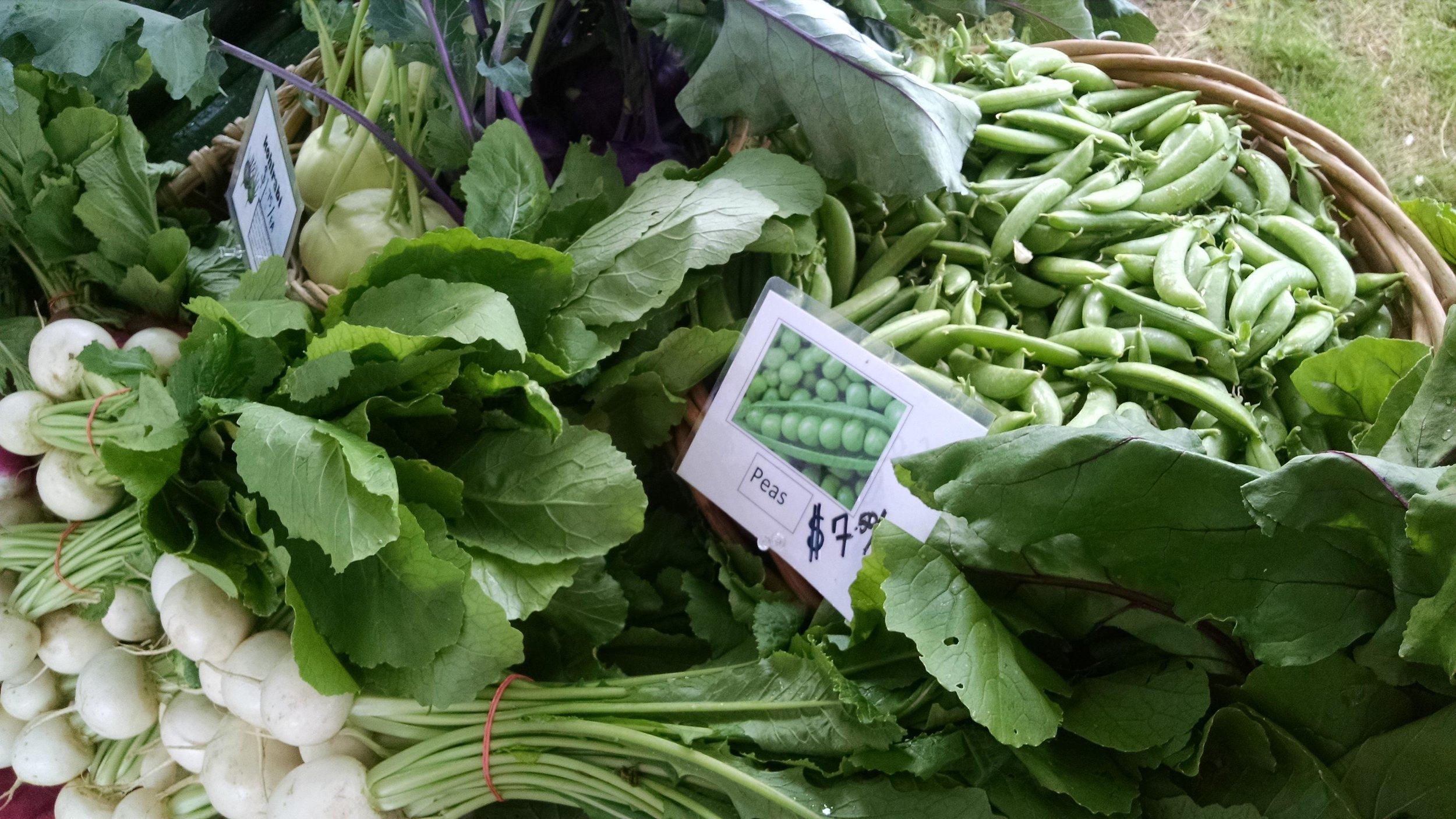 Salad turnips, snap peas, kohlrabi