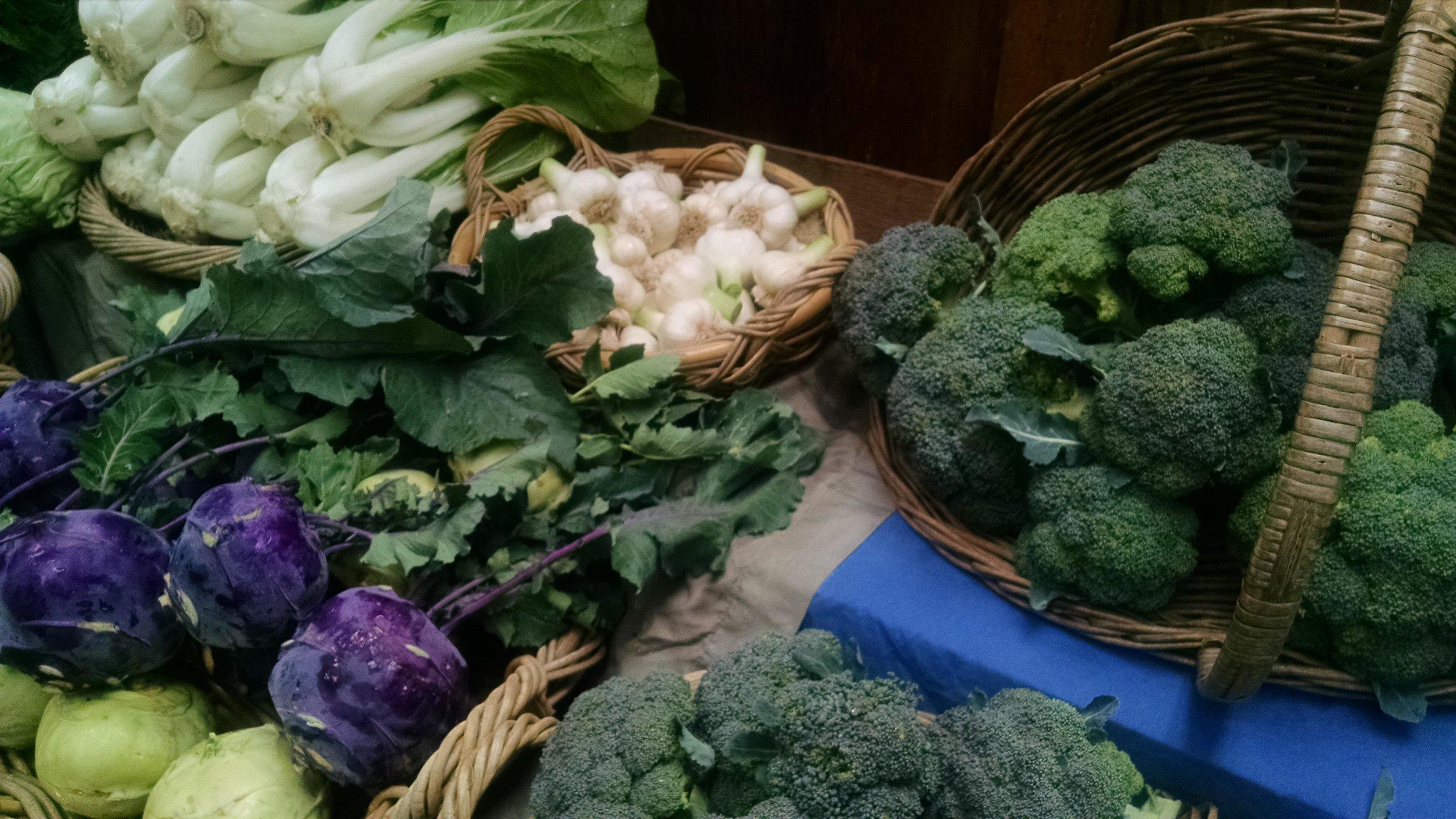 Bok choy, kohlrabi, garlic, broccoli