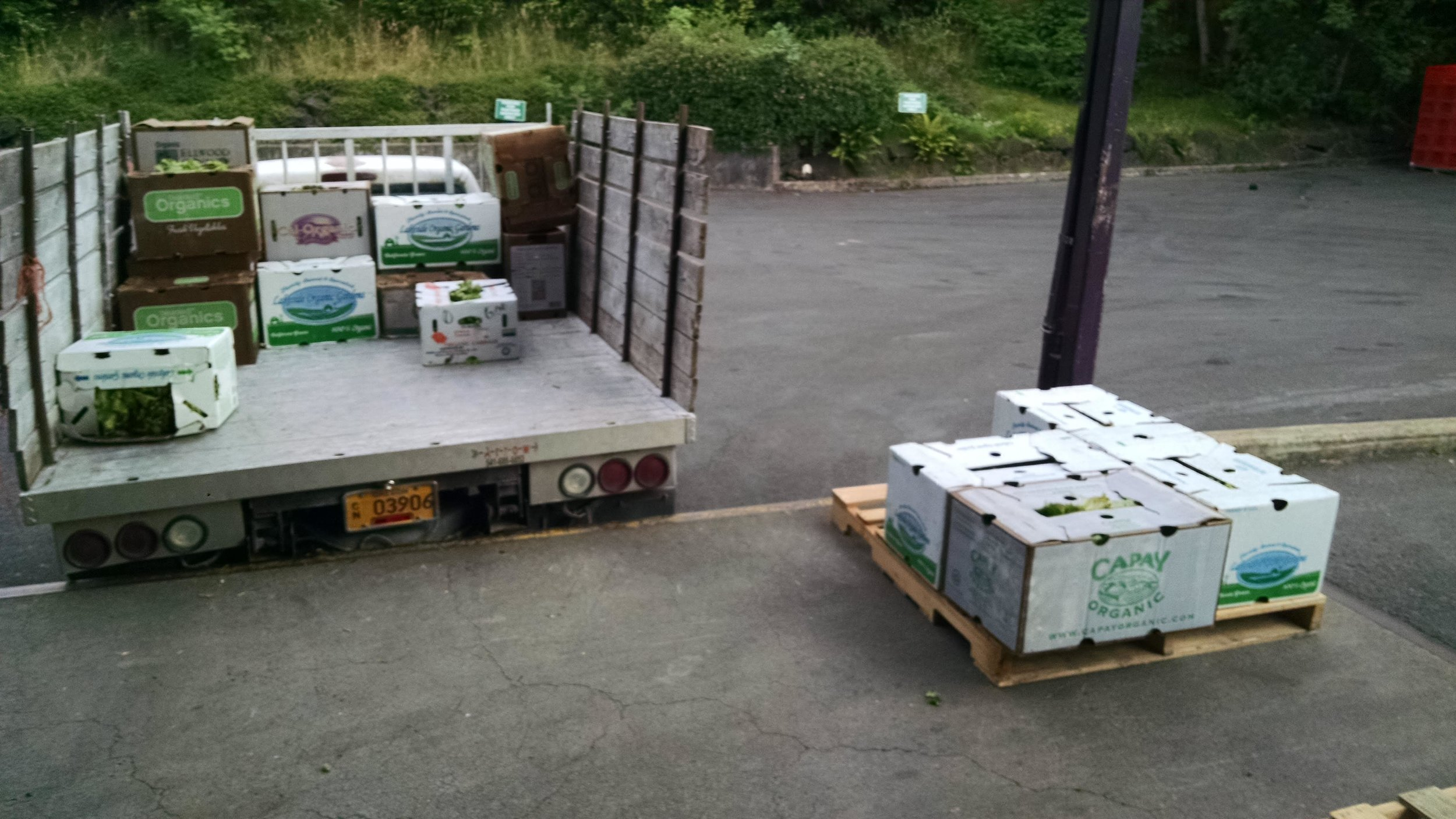 Almost done emptying the truck for the food bank