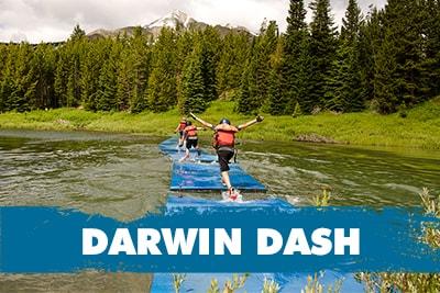 DarwinDash-min.jpg