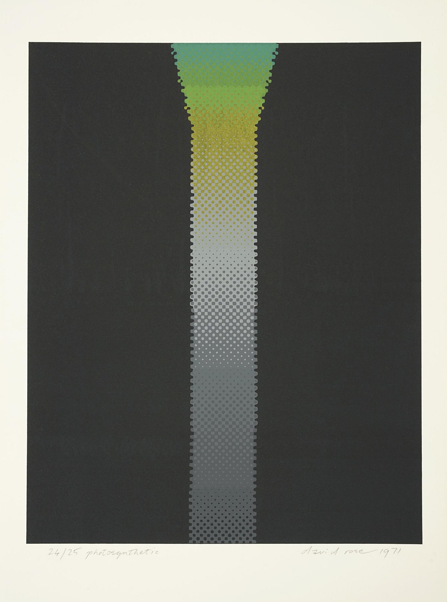 1971 photosynthetic.JPG
