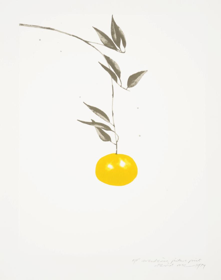 1974 mandarine picture print.JPG