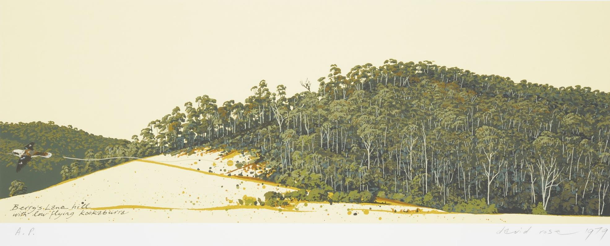 1979 Berry's Lane hill with low flying Kookaburra.JPG