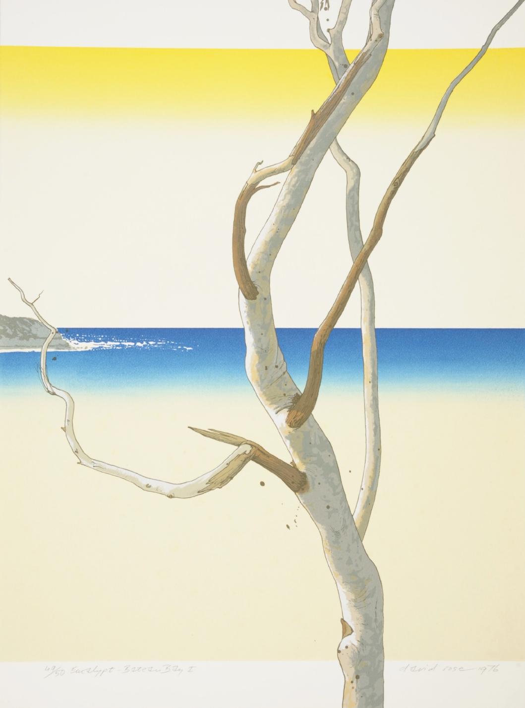Eucalypt – Bateau Bay I , 1976