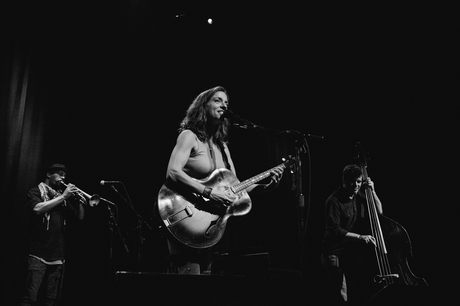 the-fillmore-ani-difranco-live-music-photography-sf.jpg