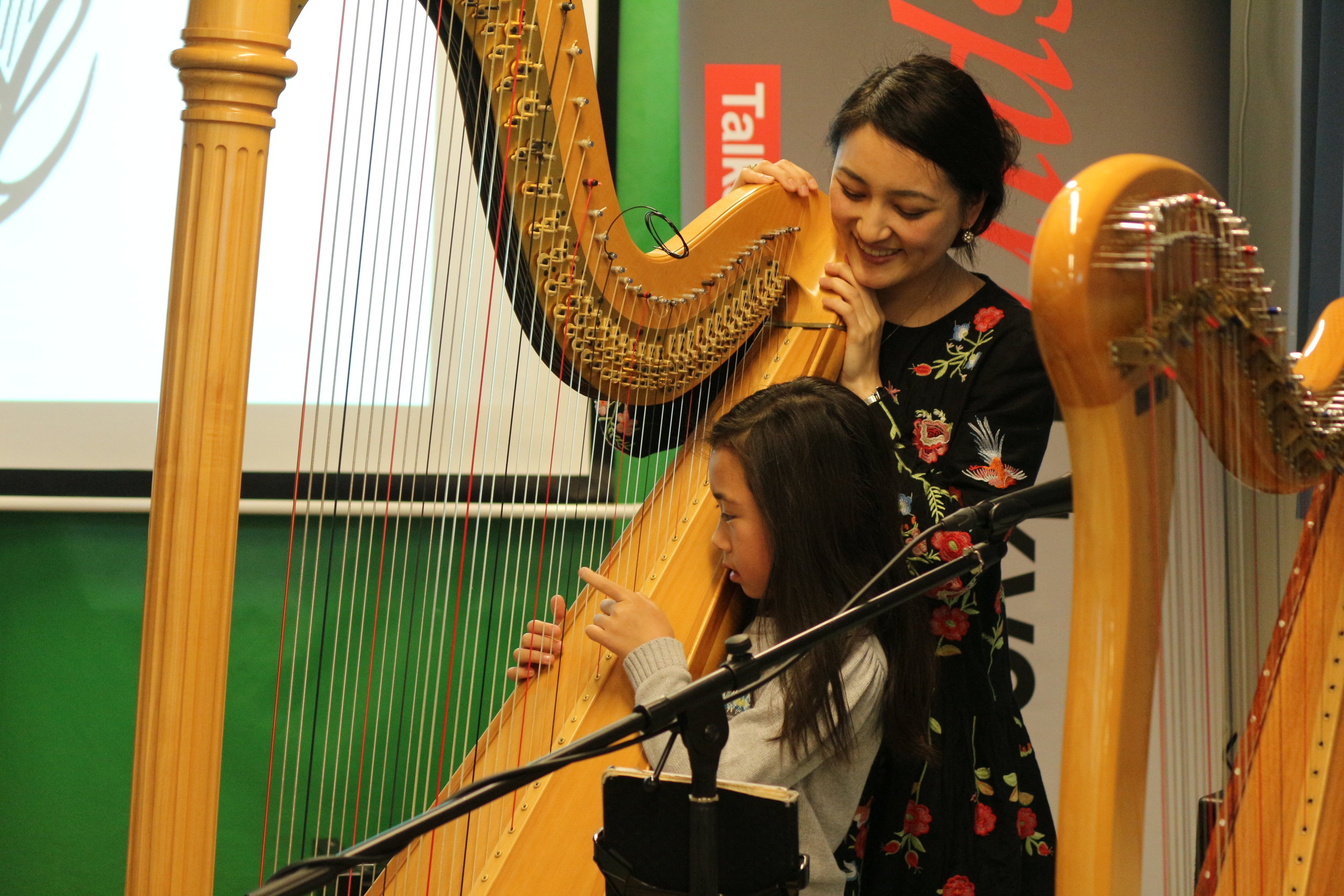 Harp&Soul2.JPG