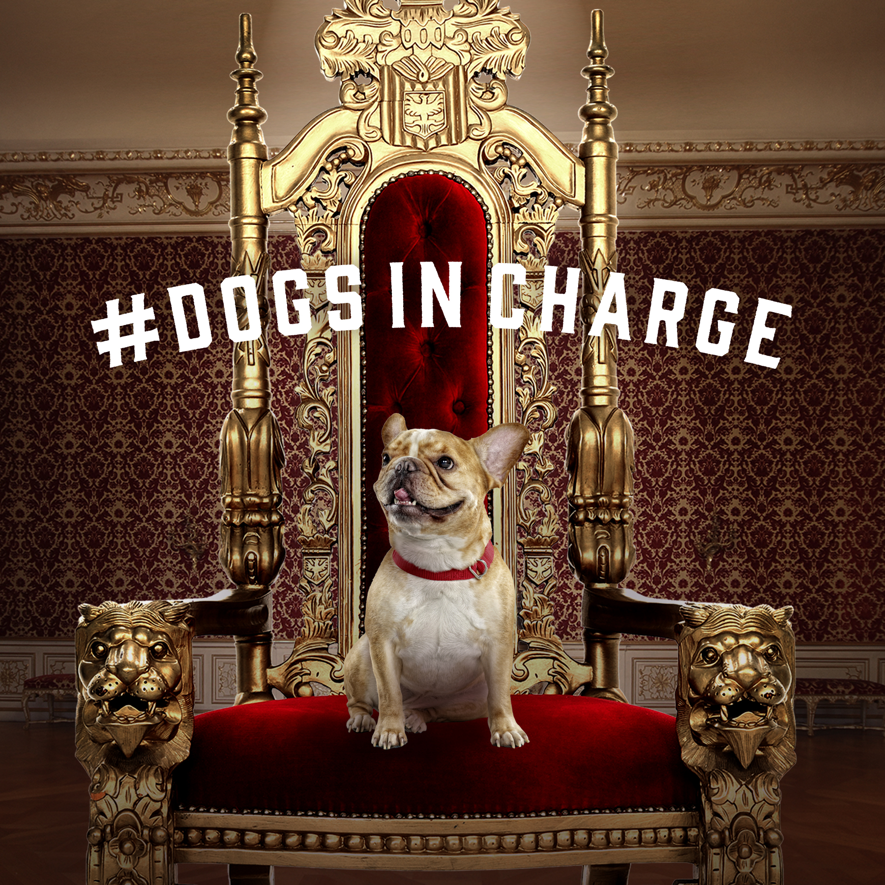 throne2d.jpg