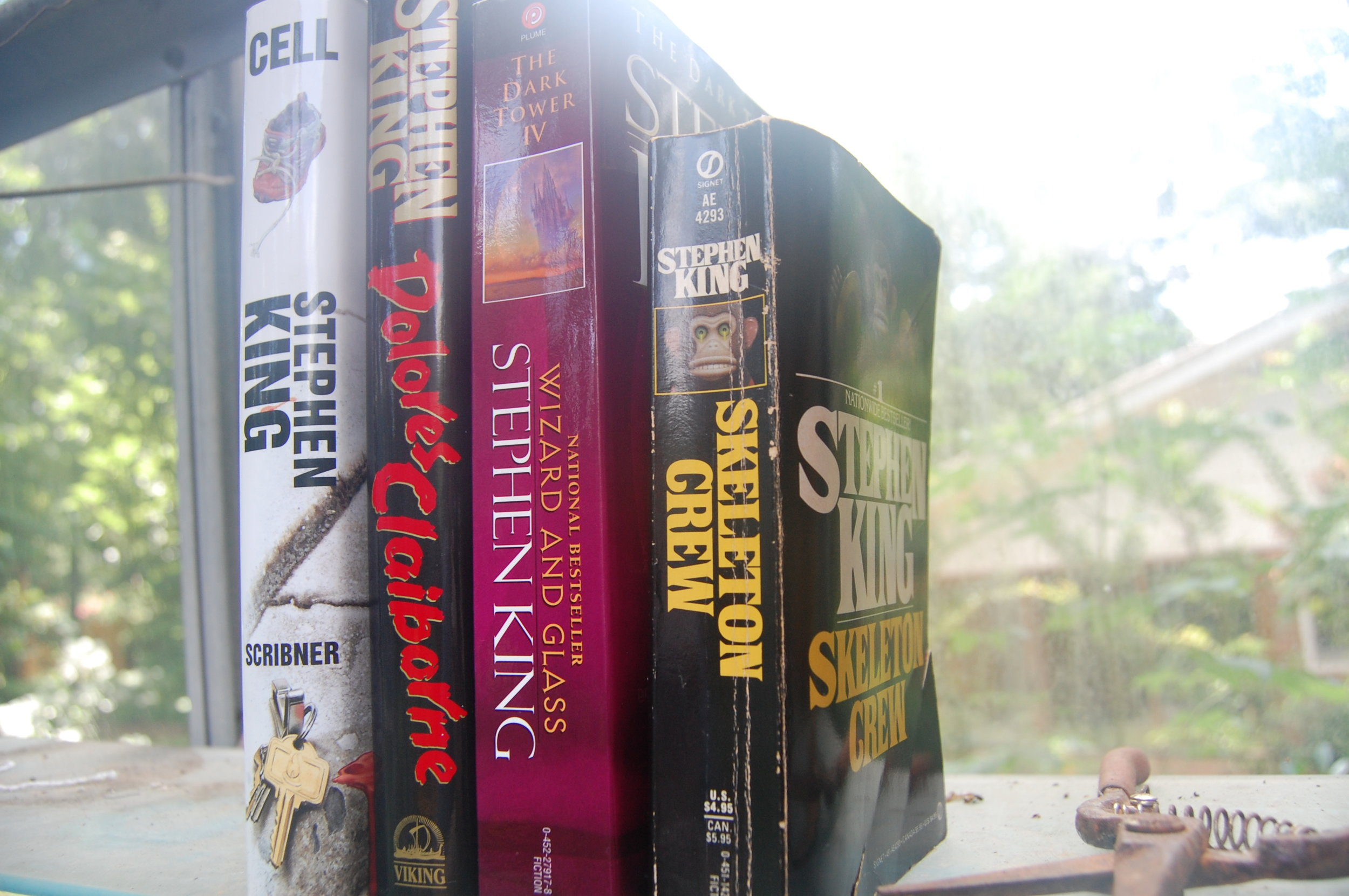Stephen King Book Shelfie Vertical