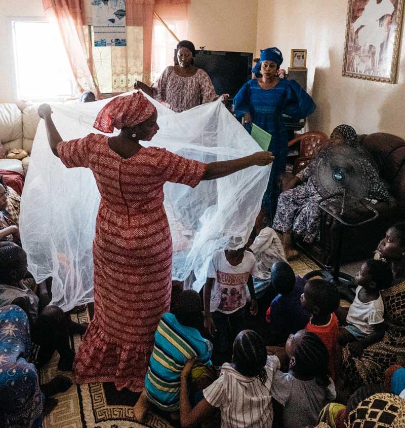 woman mosquito net senegal