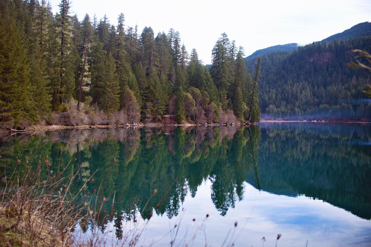 Springs-2.jpg