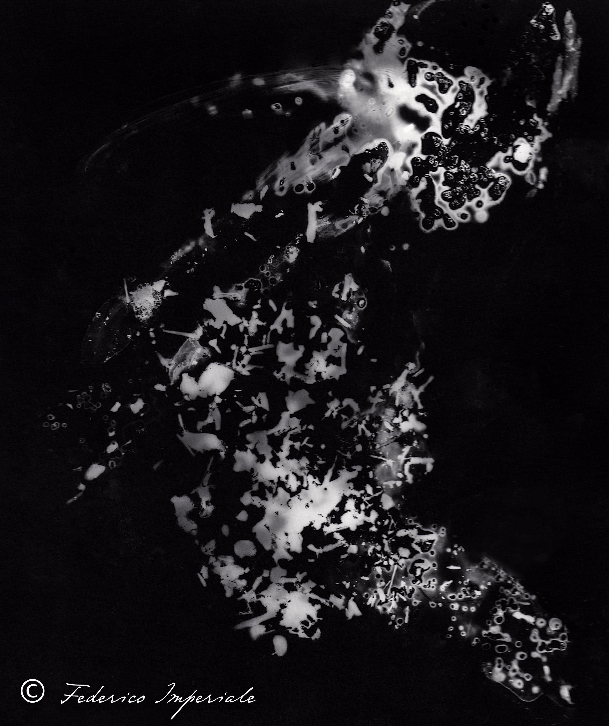 _Darkroom-2.jpg