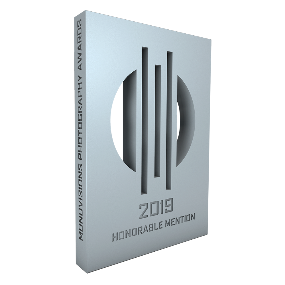 monovisions_awards_2019_hm.png