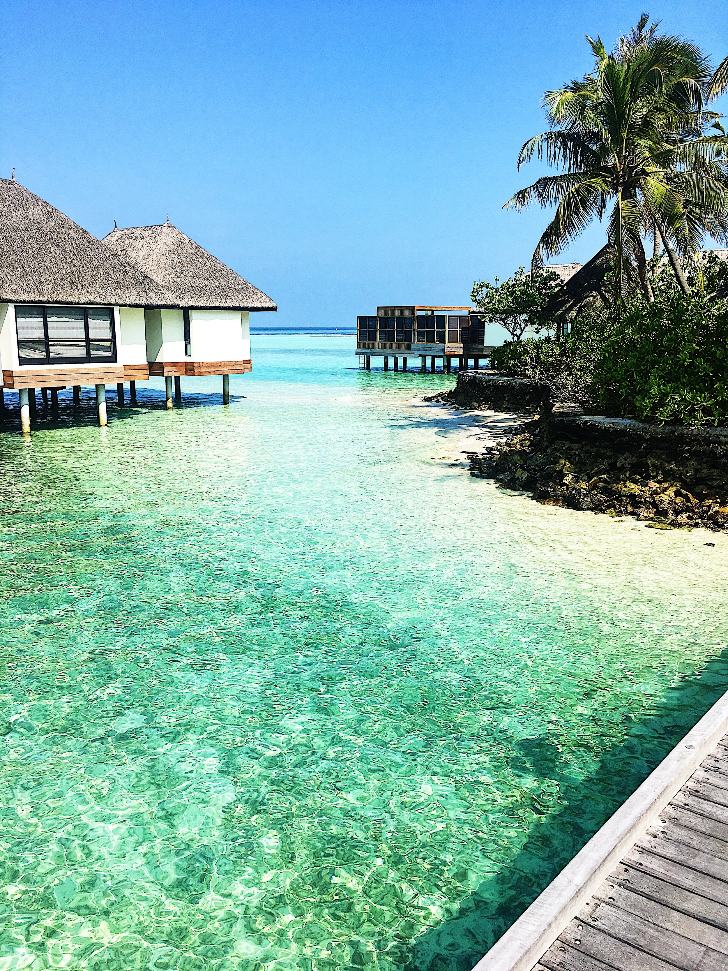 Blog 1-Married in the Maldives.jpg