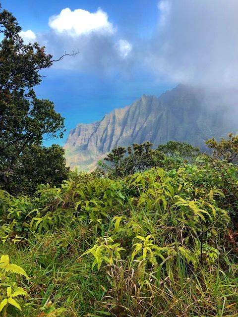 The Nā Pali Coast State Wilderness Park!