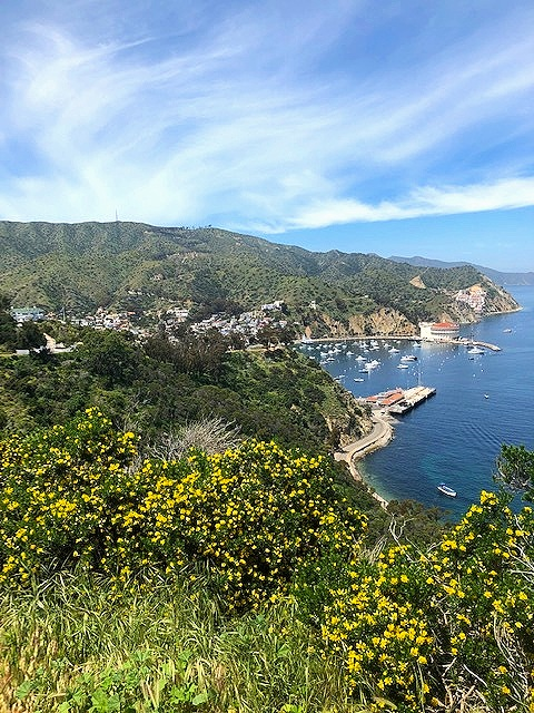 The spectacular view just below The Wrigley Mansion!