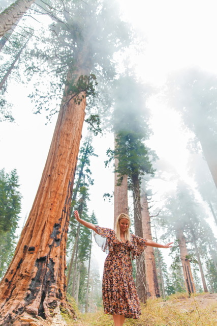 My three Instagram Worthy Locations in Sequoia National Park! — The