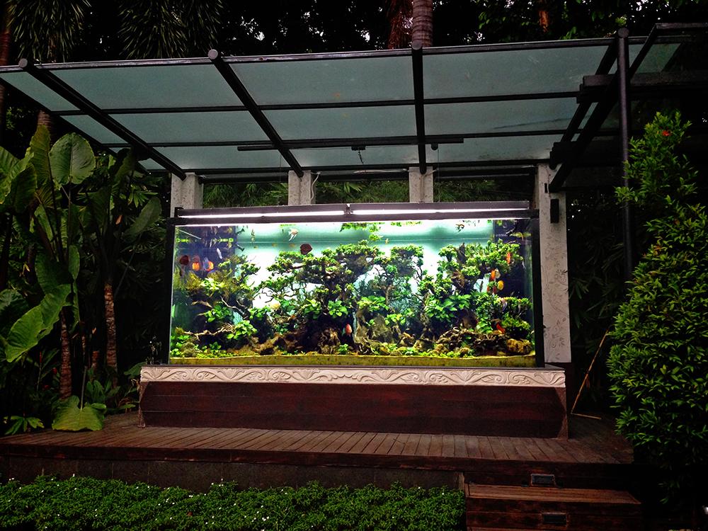 web_outdoordiscus_3.jpg