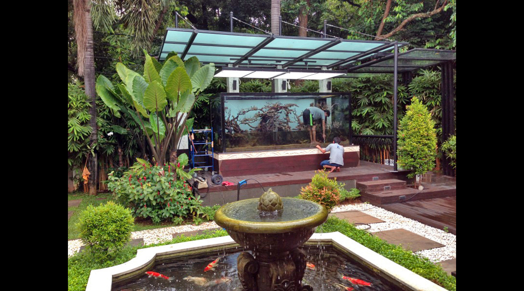 the beautiful koi pond compliments the aquarium perfectly