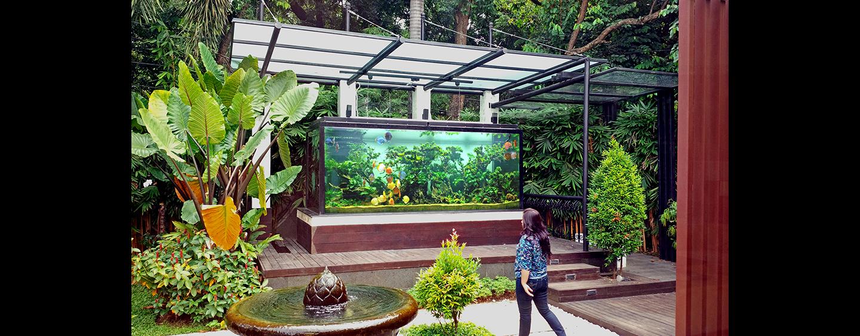 web_outdoordiscus_1.jpg