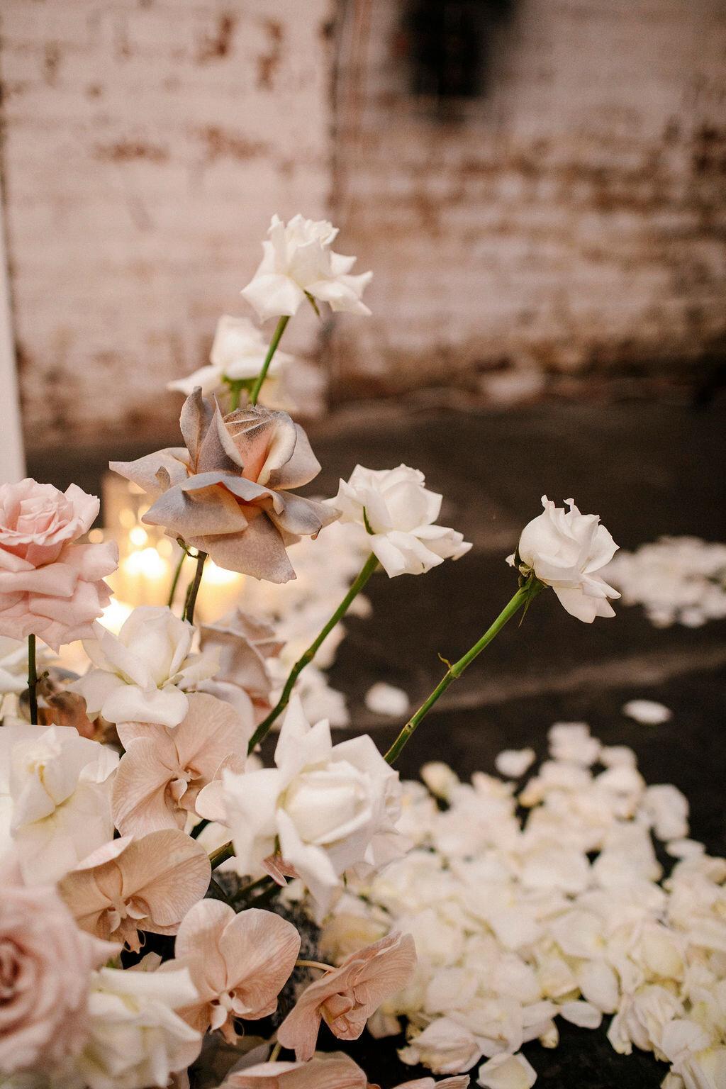 WEDDINGS - VIEW ALBUM
