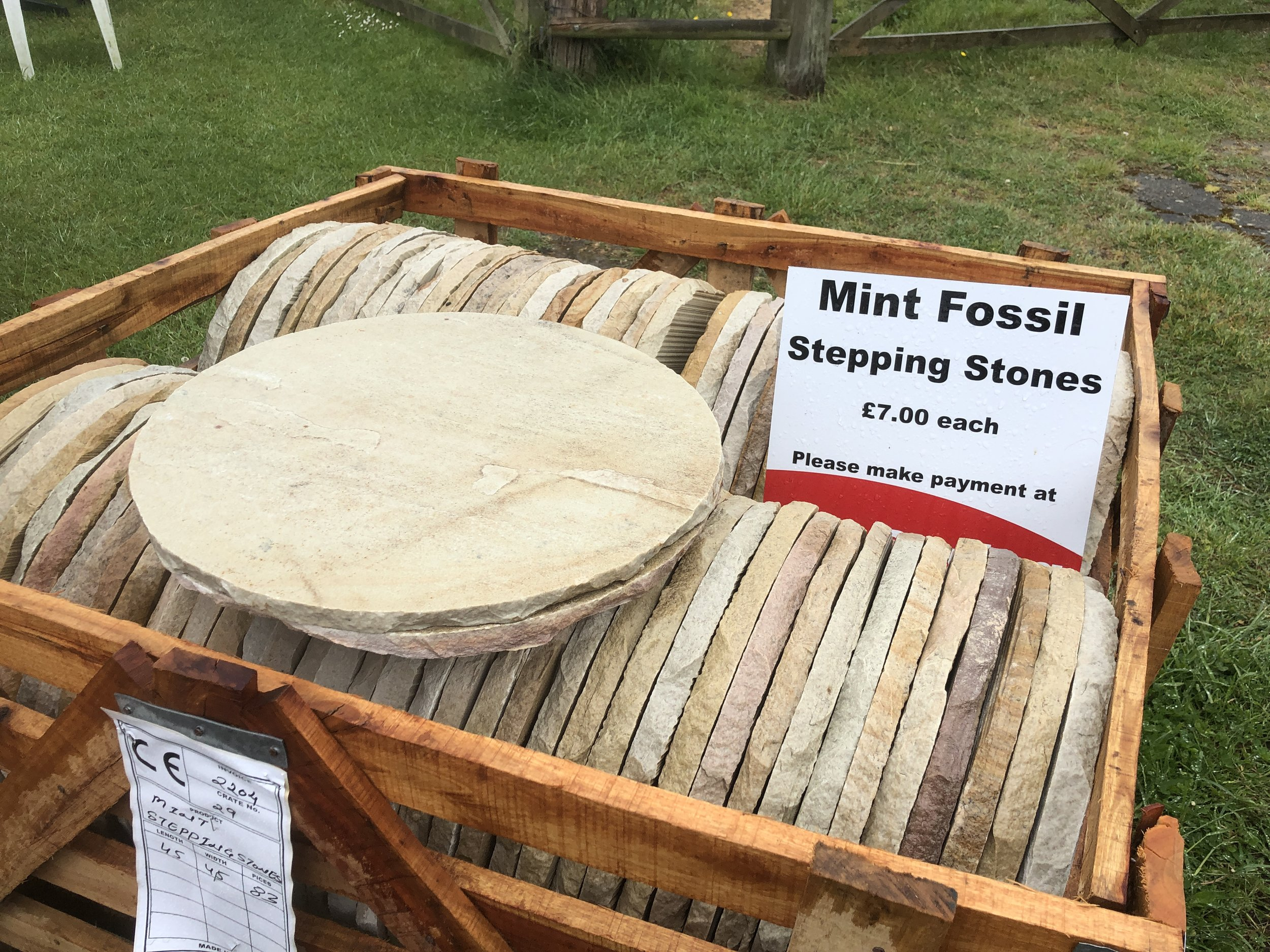 Mint Fossil -   Click for more information and pricing.