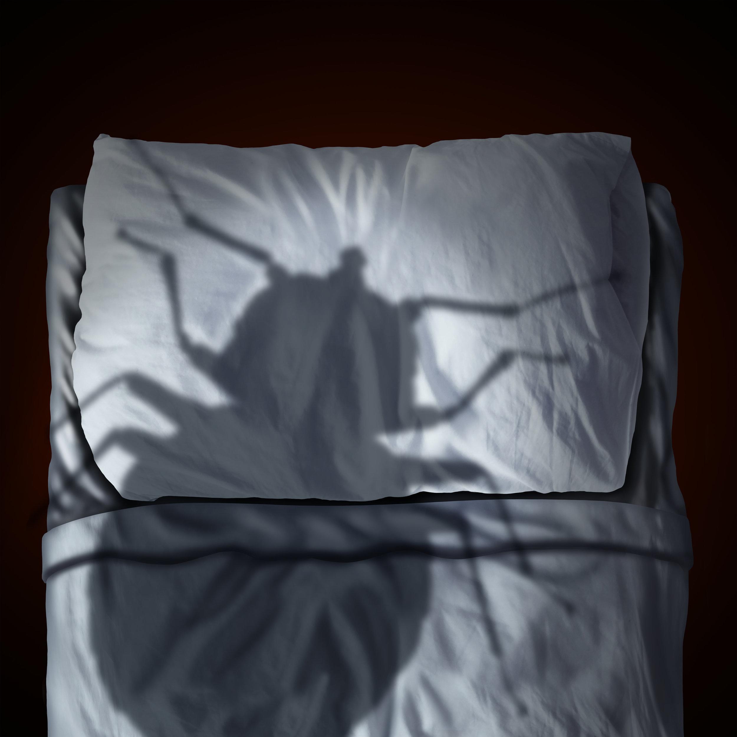 Does Bed Bug Freezing Work? Long Island, NY