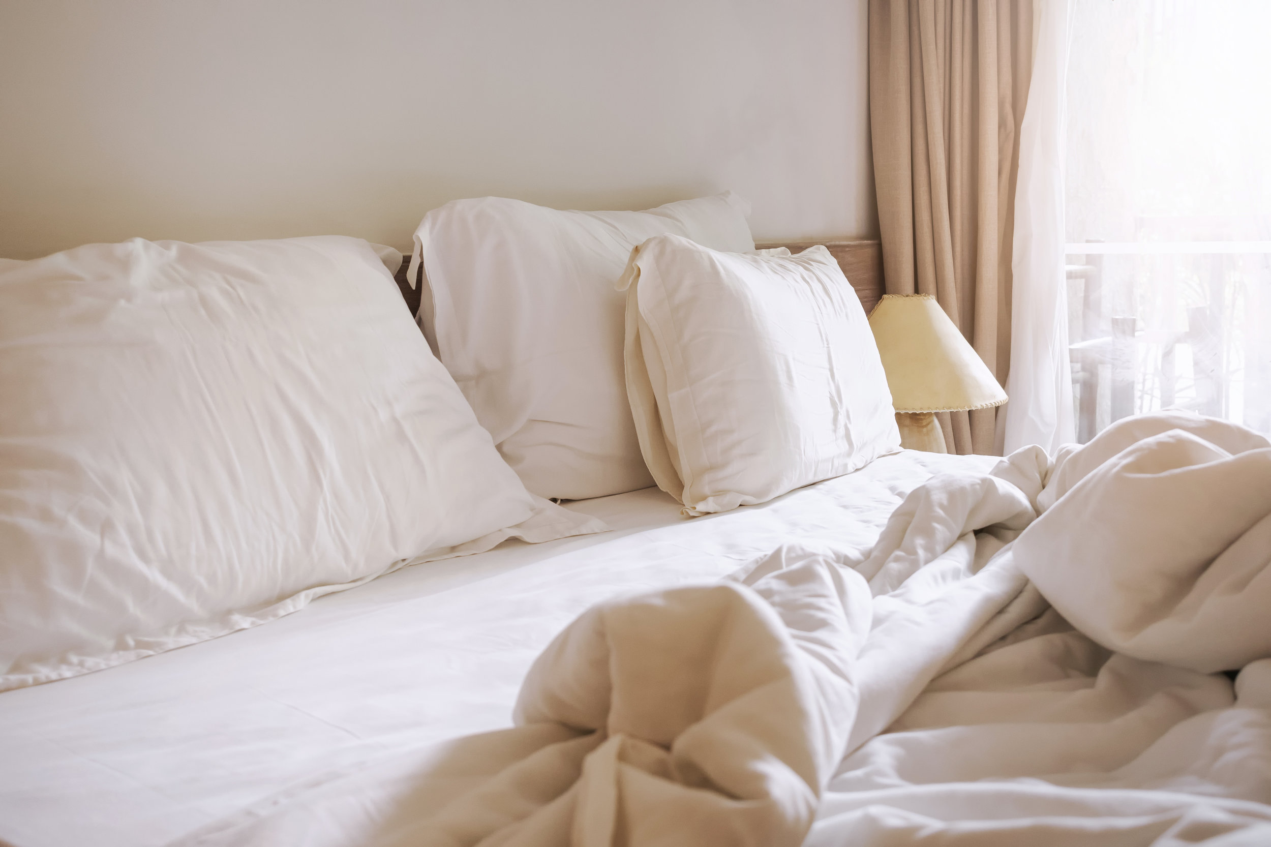 How a Bed Bug Exterminator Handles Bed Bug Infested Mattresses and Furniture in Manhattan, NY