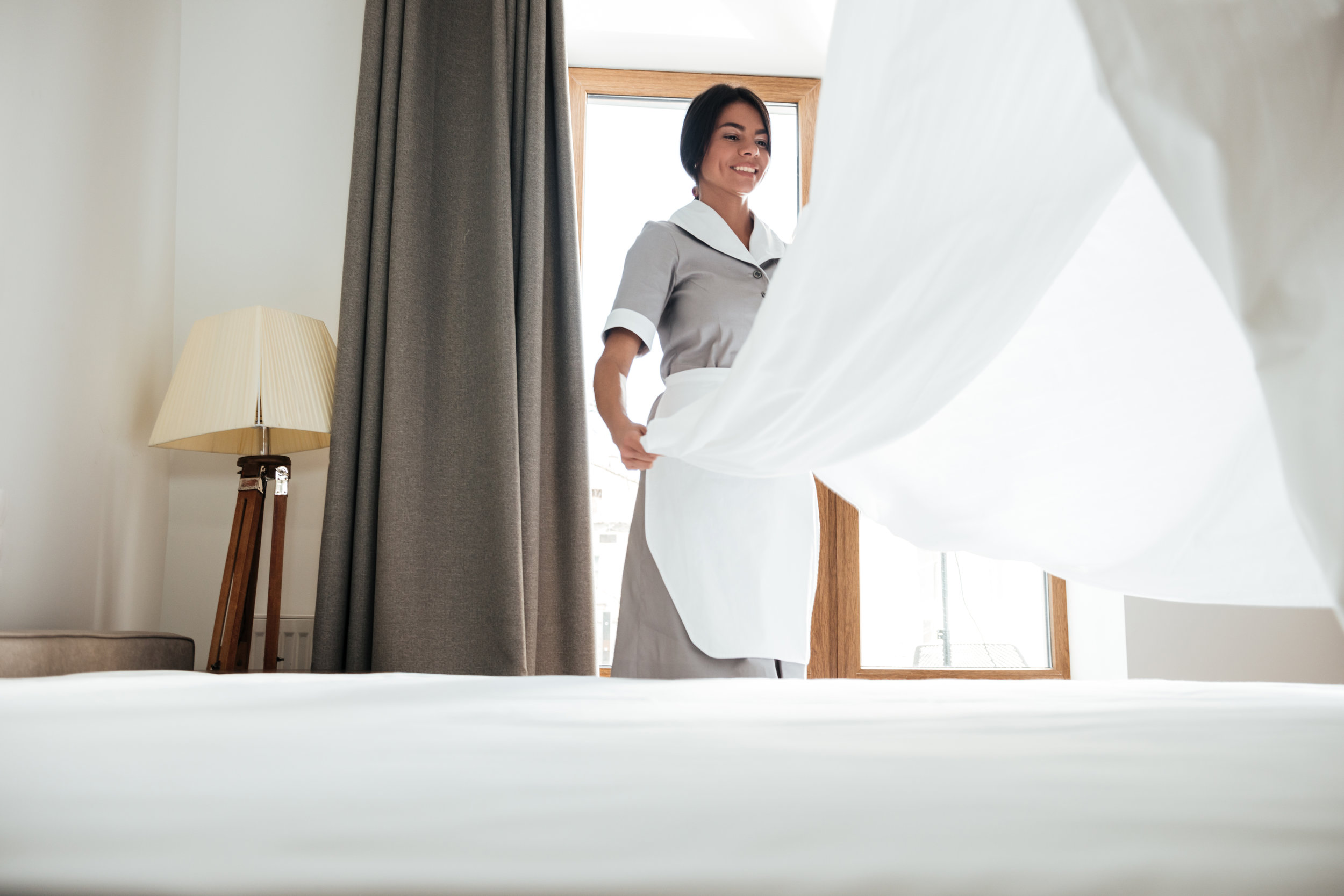 The Importance of Bed Bug Control Training for Your Hotel Staff in Nassau County, NY