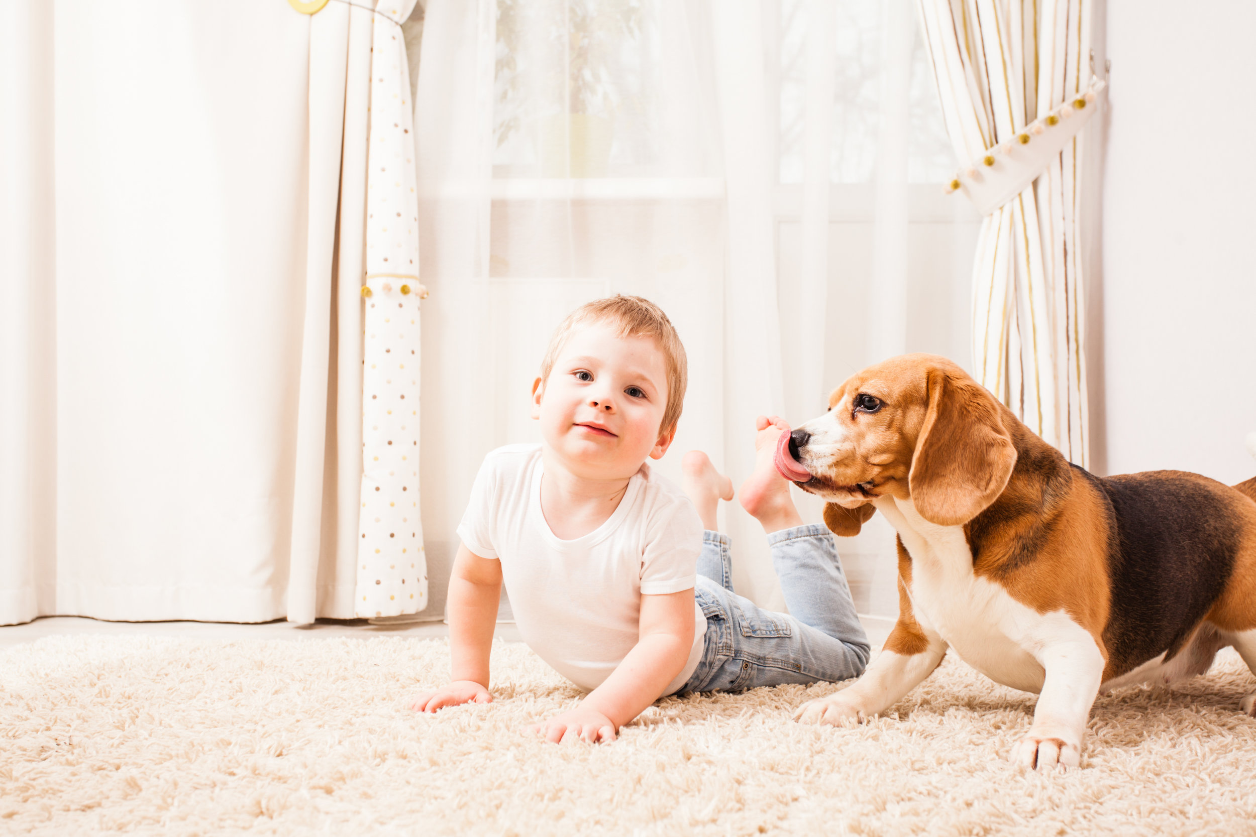 How an Exterminator Can Keep Your Children Safe from Bed Bug Bites in Brooklyn, NY