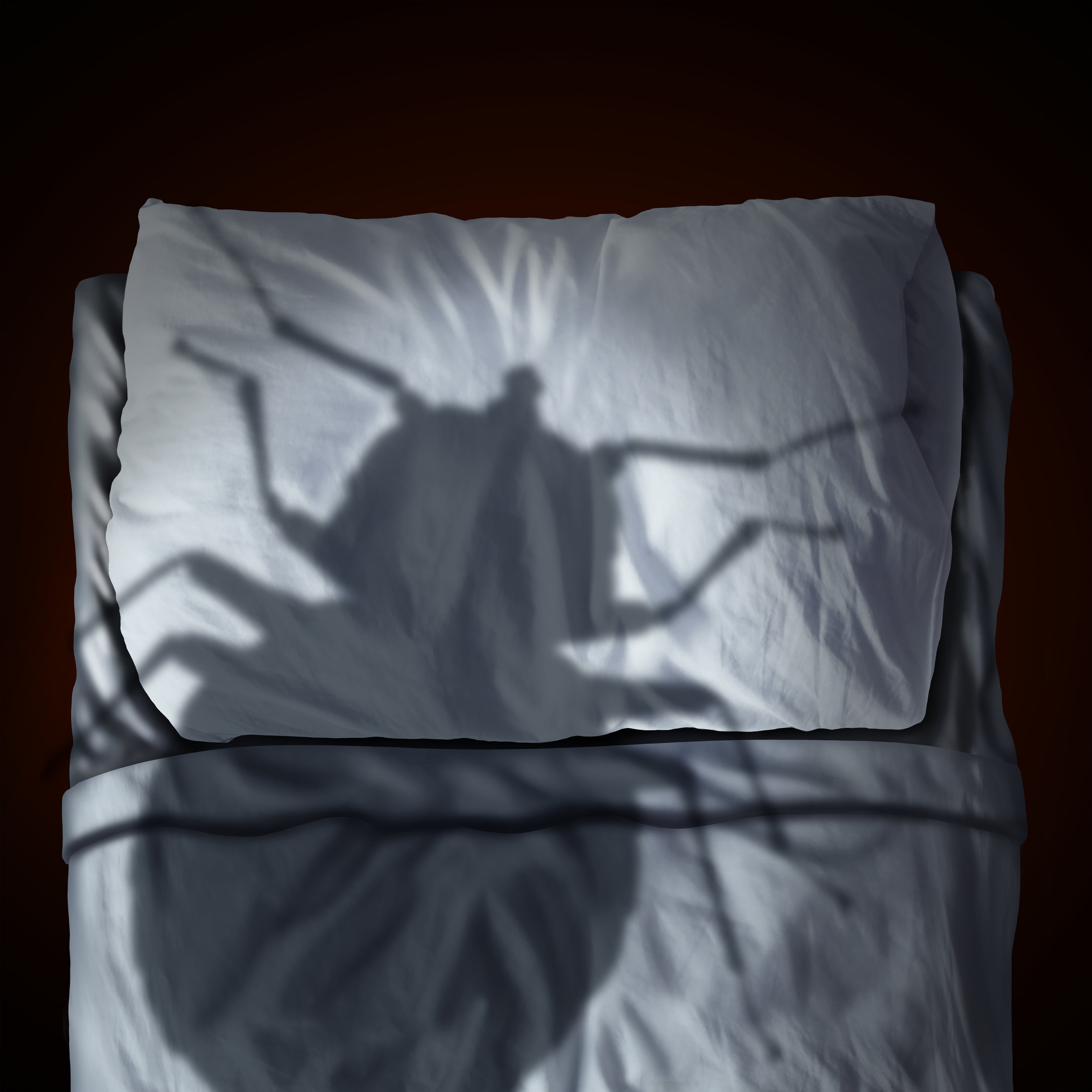 Why Some Infestations Require Multiple Bed Bug Treatments in Brooklyn, NY