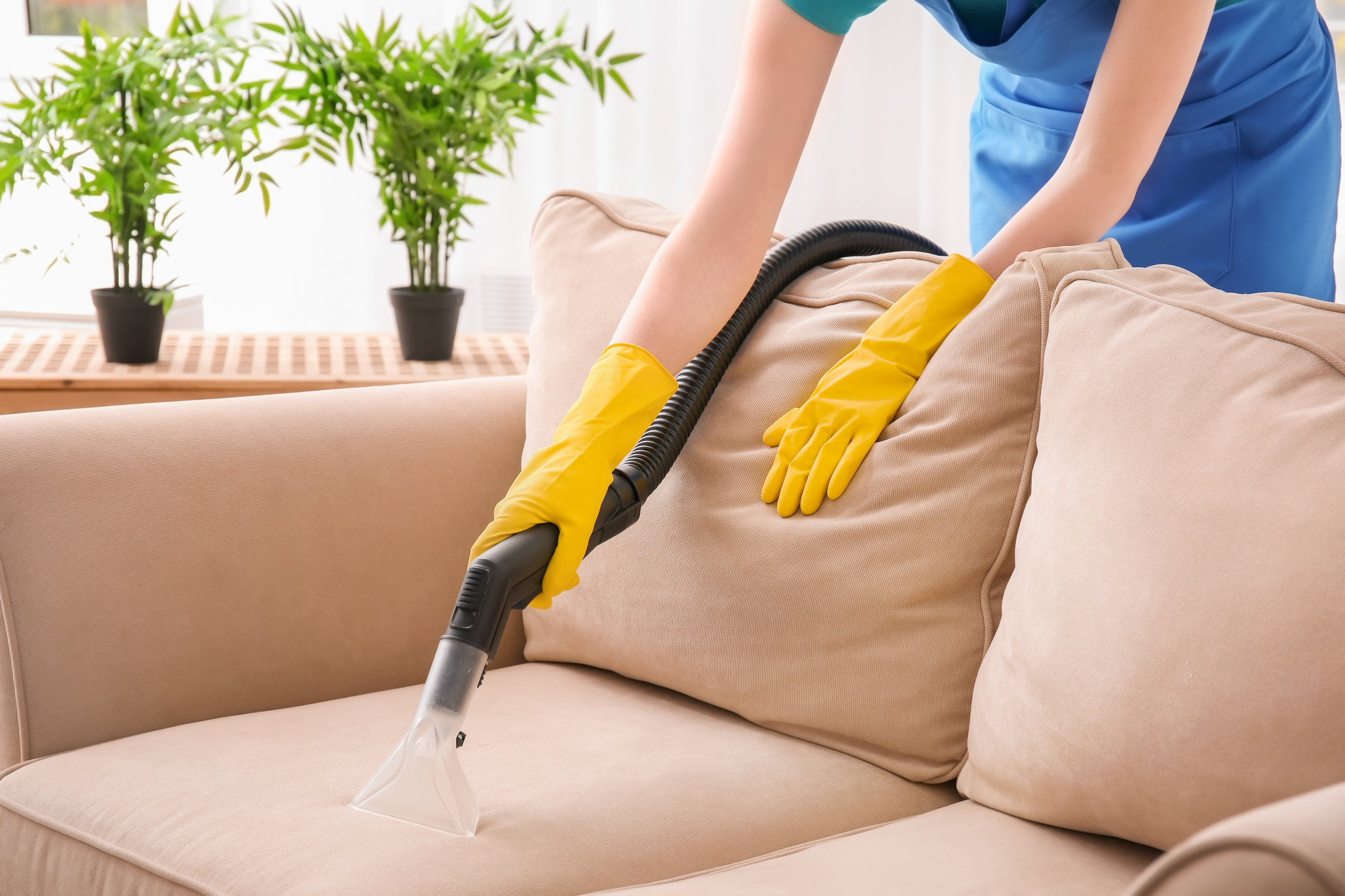 Tips to Preparing Your Home for a Bed Bug Exterminator Service Visit