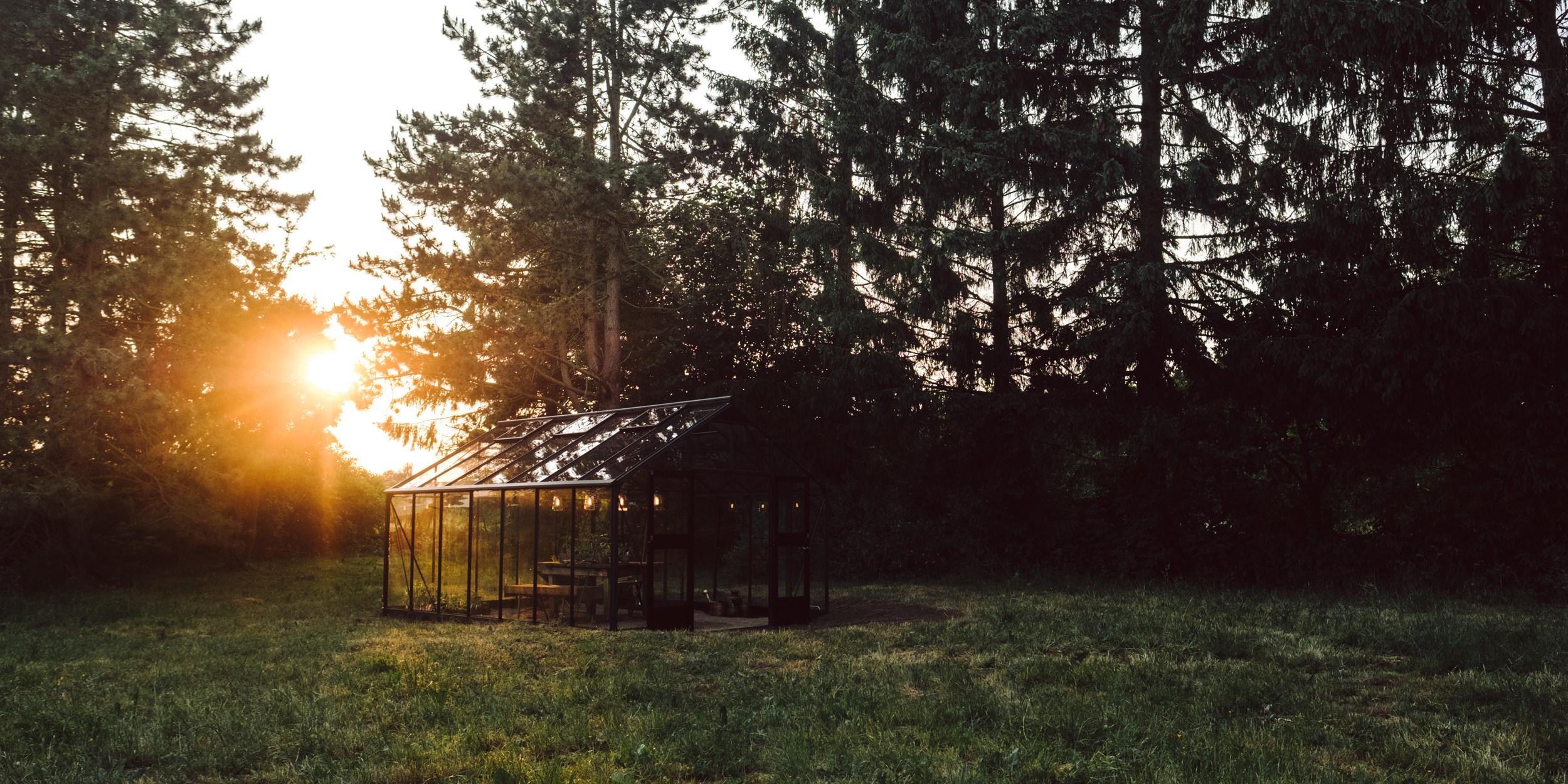 a dream - Yannic & Susann built their gardenhouse!