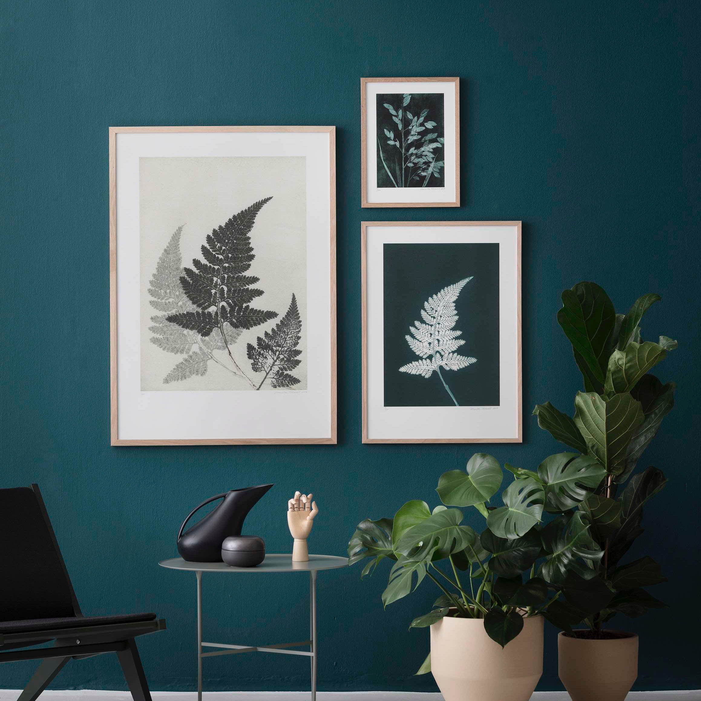 The beautiful prints of Pernille Folcarelli in my store