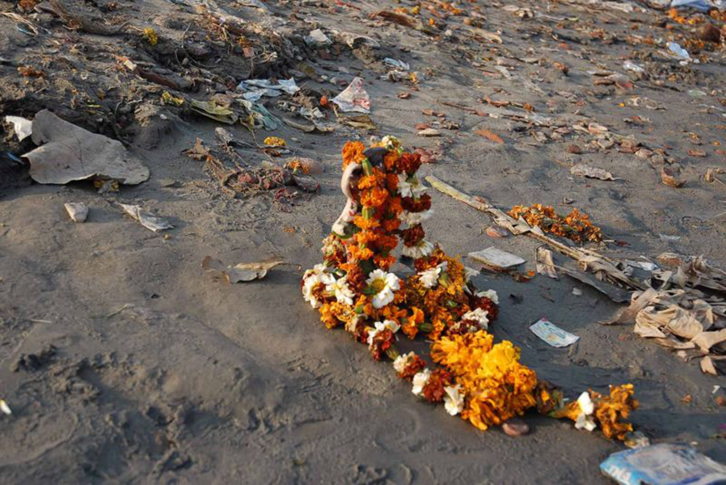 Ravi Agarwal,  Have you seen the flowers on the river?,  2007, stampa fotografica, 24 x 36 cm, courtesy: courtesy Ravi Agarwal