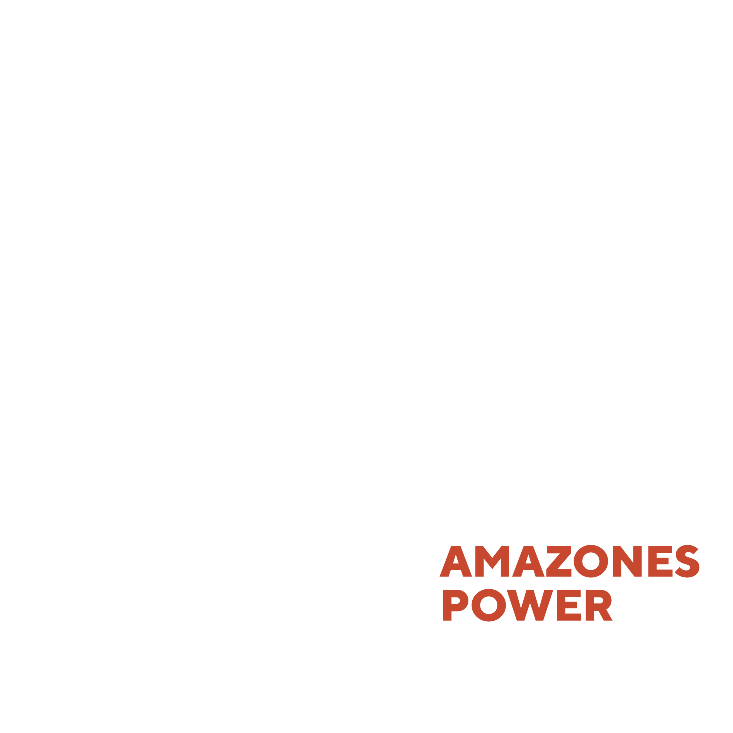 AMAZONES POWER digi.png