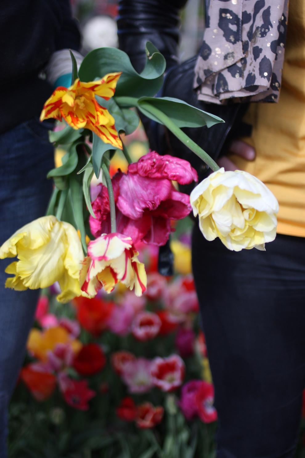 Keukenhof14_Annemiekes_Pluktuin_bouquet_in_hand.jpg