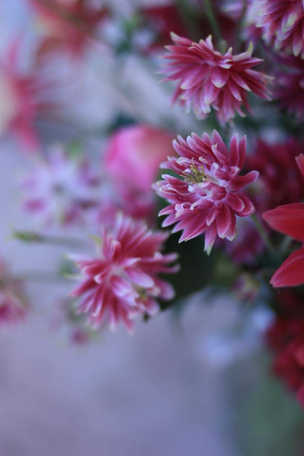red_bouquet_4.jpg