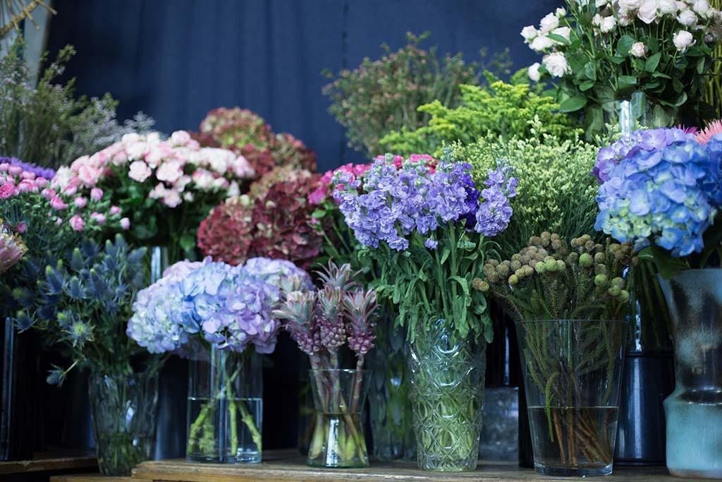 Flowered-by-T-Feret.jpg