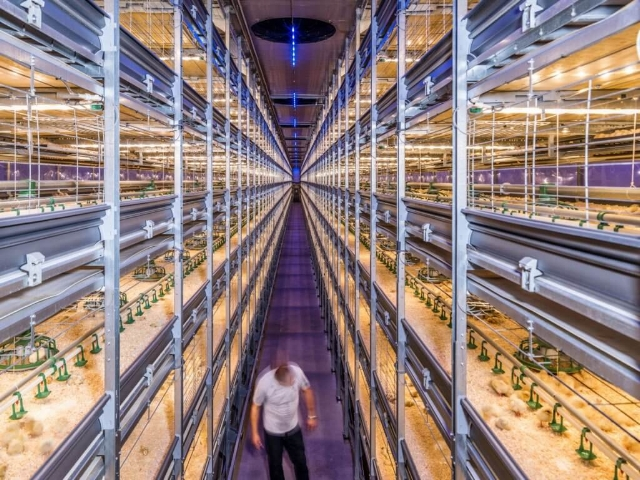 Source: https://www.nextbigfuture.com/2017/09/netherlands-is-world-number-two-in-agricultural-exports-by-using-greenhouses-and-new-technology.html