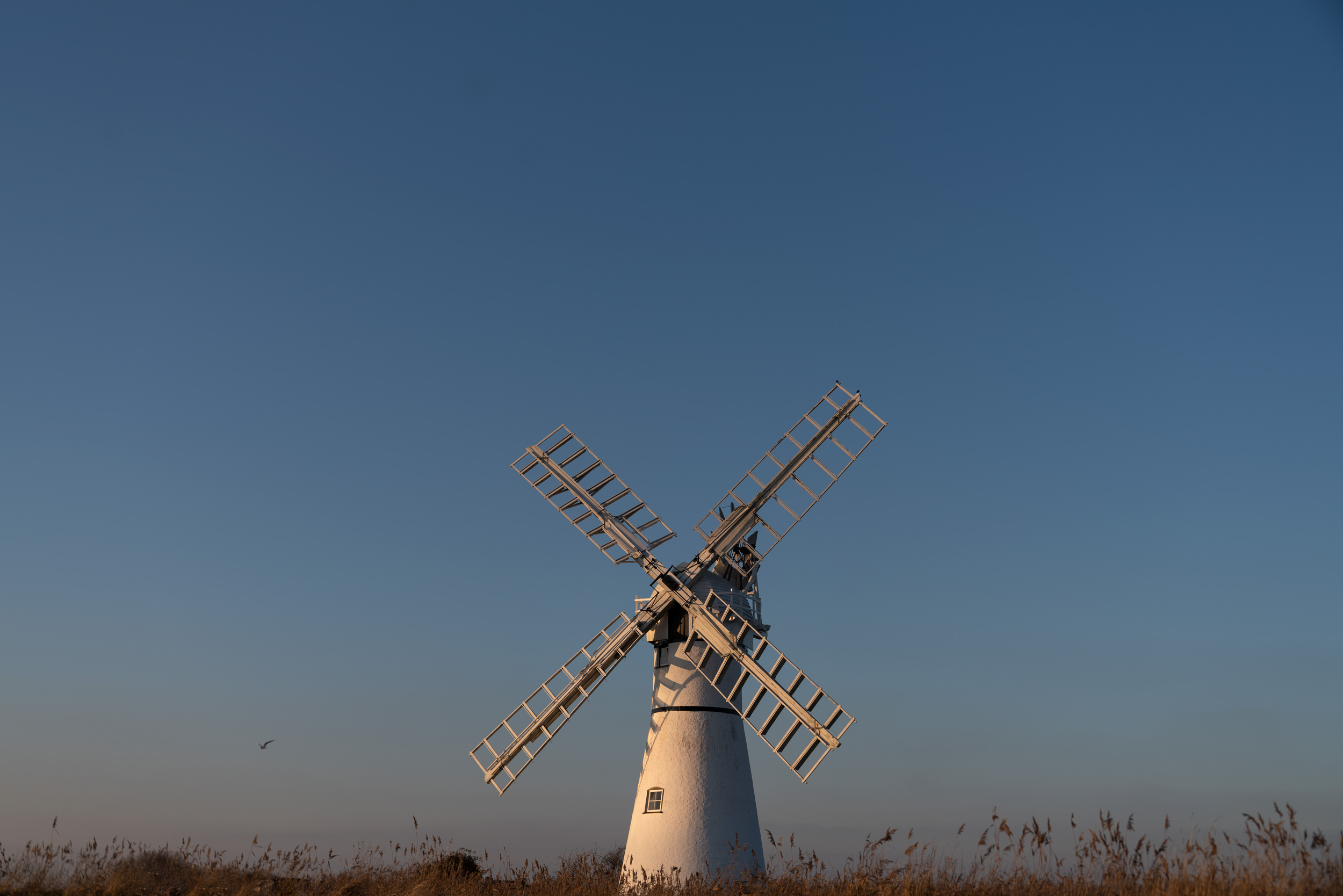 Thurne Mill, Norfolk.
